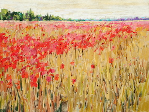 <b>Countryside Poppies 5</b><br/>24 x 18<br/><br/>