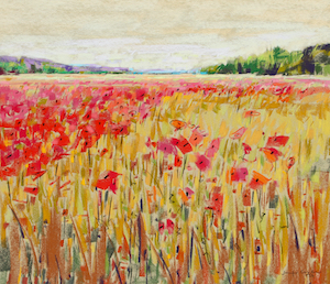 <b>Poppies, France 2</b><br/>Image Size 20 x 18<br/>Framed Size 28 x 26<br/><br/>